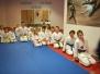 Seminarium z Mistrzami z klubu Akayama ze Szprotawy 17.06.2017