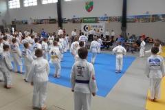 super-liga-judo-kobierzyce_006