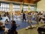 Super Liga Judo 2017 - zawody w Sobótce
